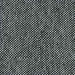 Grey Brindle